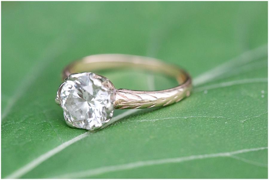 southwest-virginia-engagement-photographer_0031