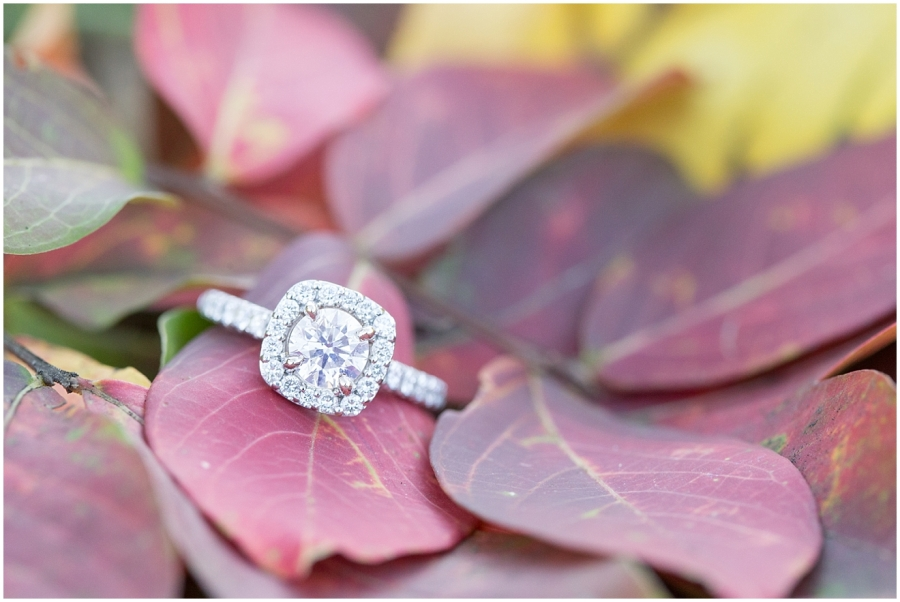 engagement-ring-fall-leaves