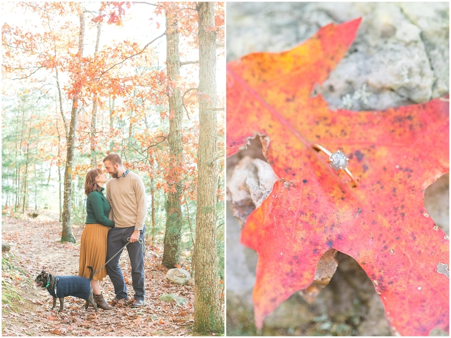virginia-fall-engagement-session